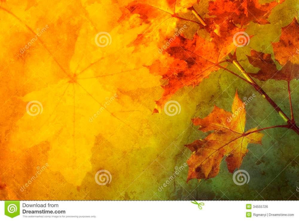 medium resolution of autumn abstract royalty free stock image image 34555726 boat clip art boat clip art
