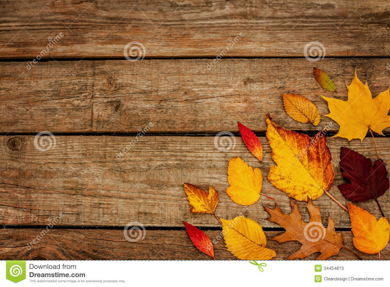 Free Fall Foliage Wallpaper Autumn Background Different Shaped Leaves On Wood Stock