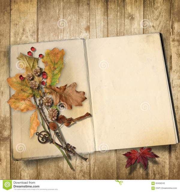 Autumn Background. Book Wooden Background With