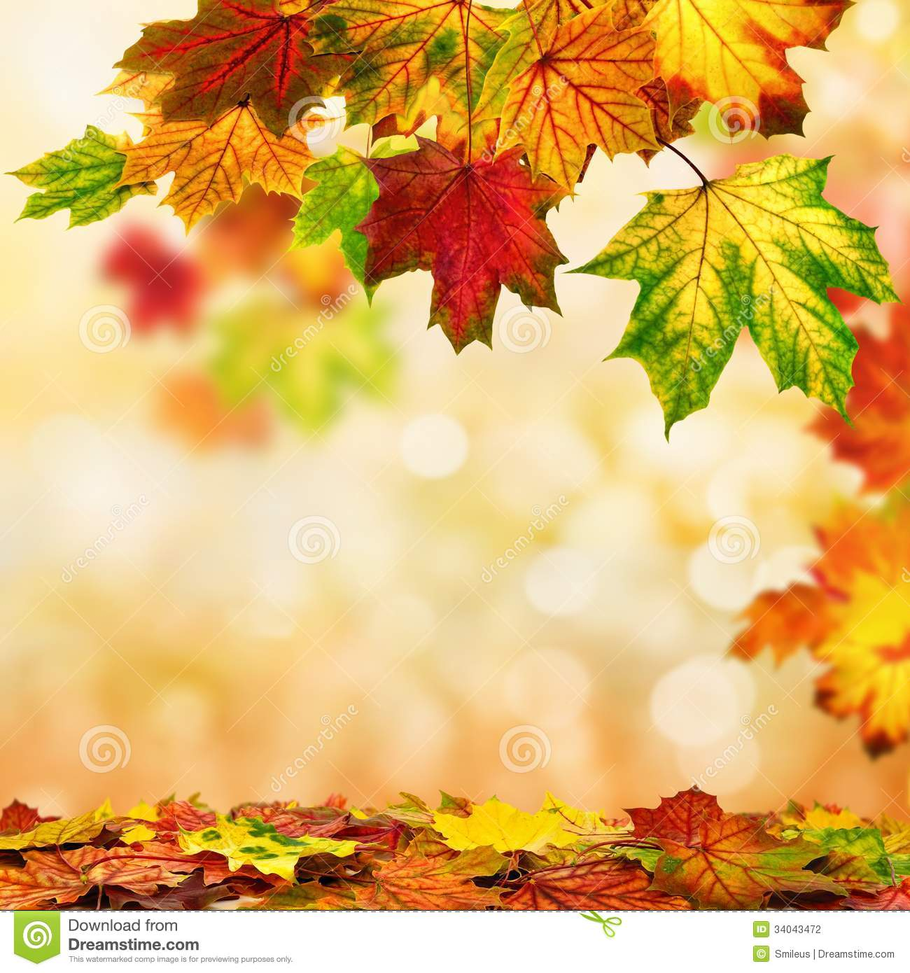 Free Scenic Fall Wallpaper Autumn Bokeh Background Bordered With Leaves Stock