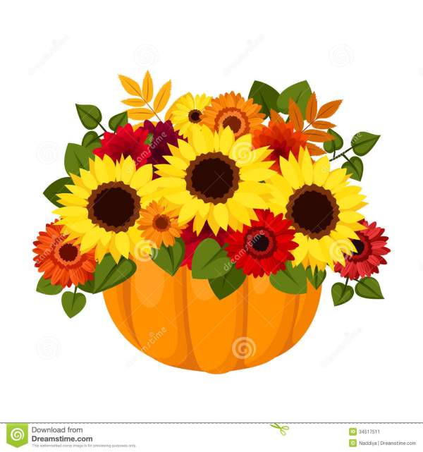 autumn colorful flowers in pumpkin