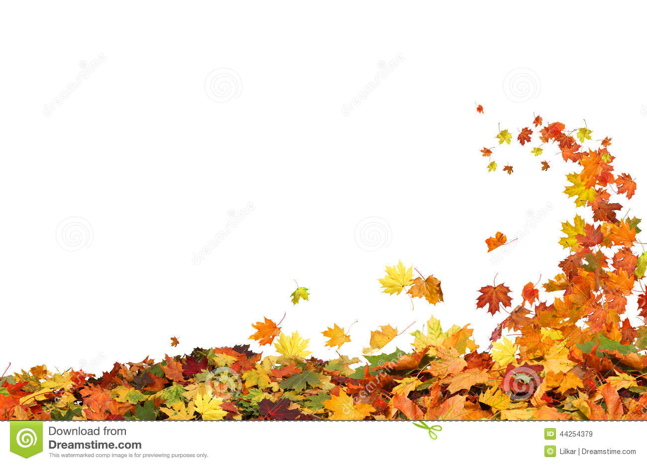 Fall Leaves Wallpaper Autumn Falling Leaves Stock Image Image Of Falling