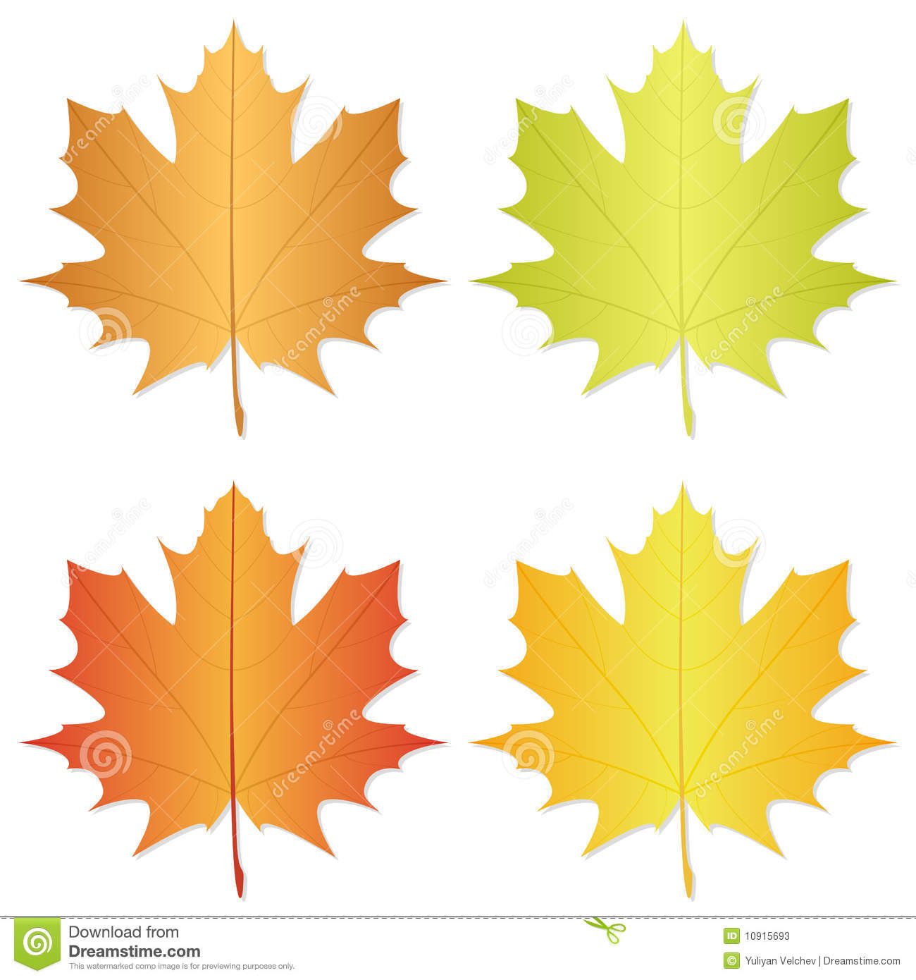 hight resolution of autumn leaf
