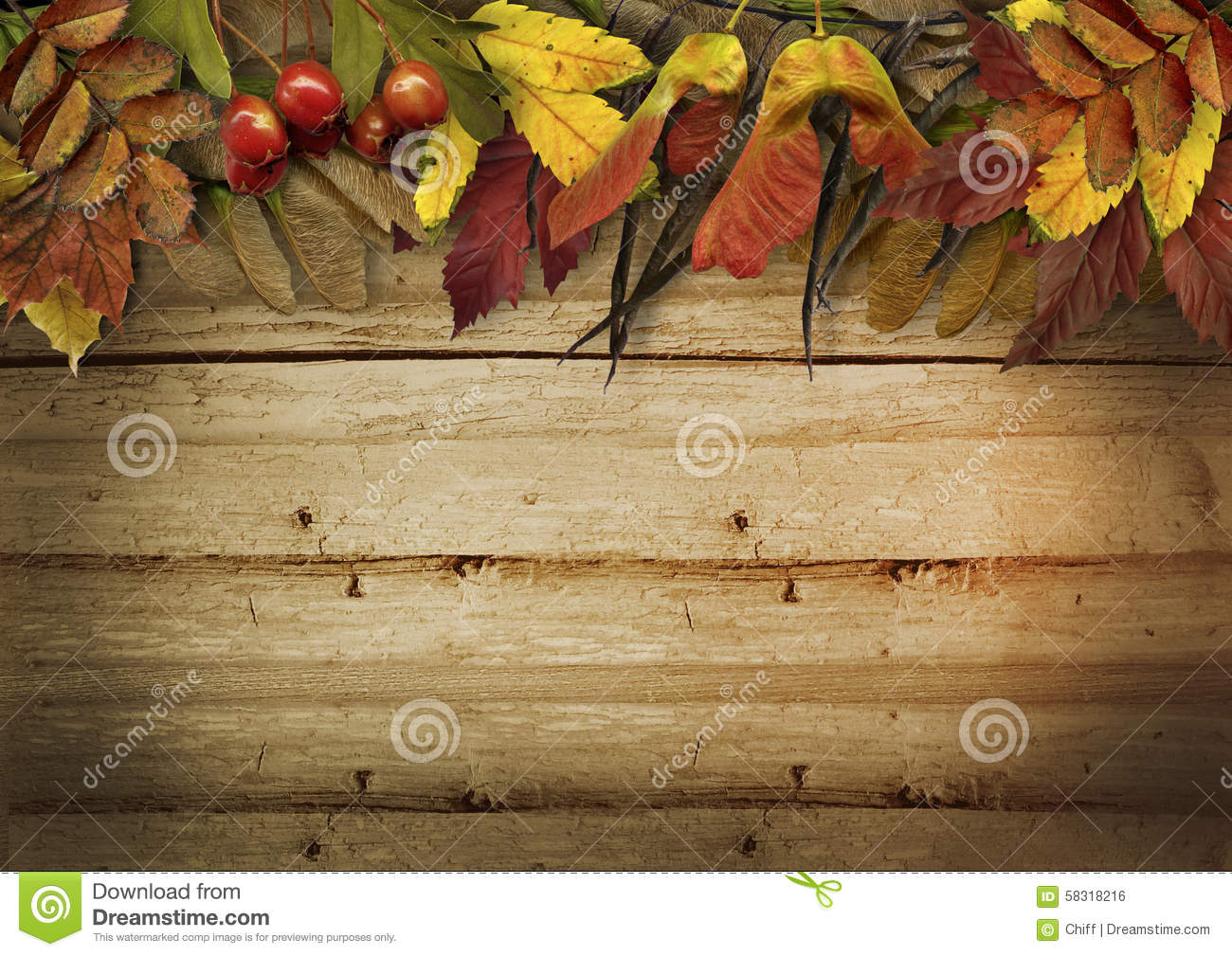 Fall And Thanksgiving Wallpaper Autumn Leaves Border On Vintage Wooden Background Stock
