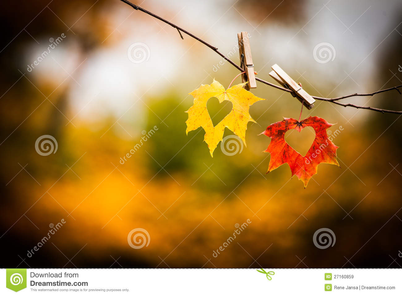 Fall Foliage Deskt Op Wallpaper Autumn Leaves With Hearts Royalty Free Stock Images