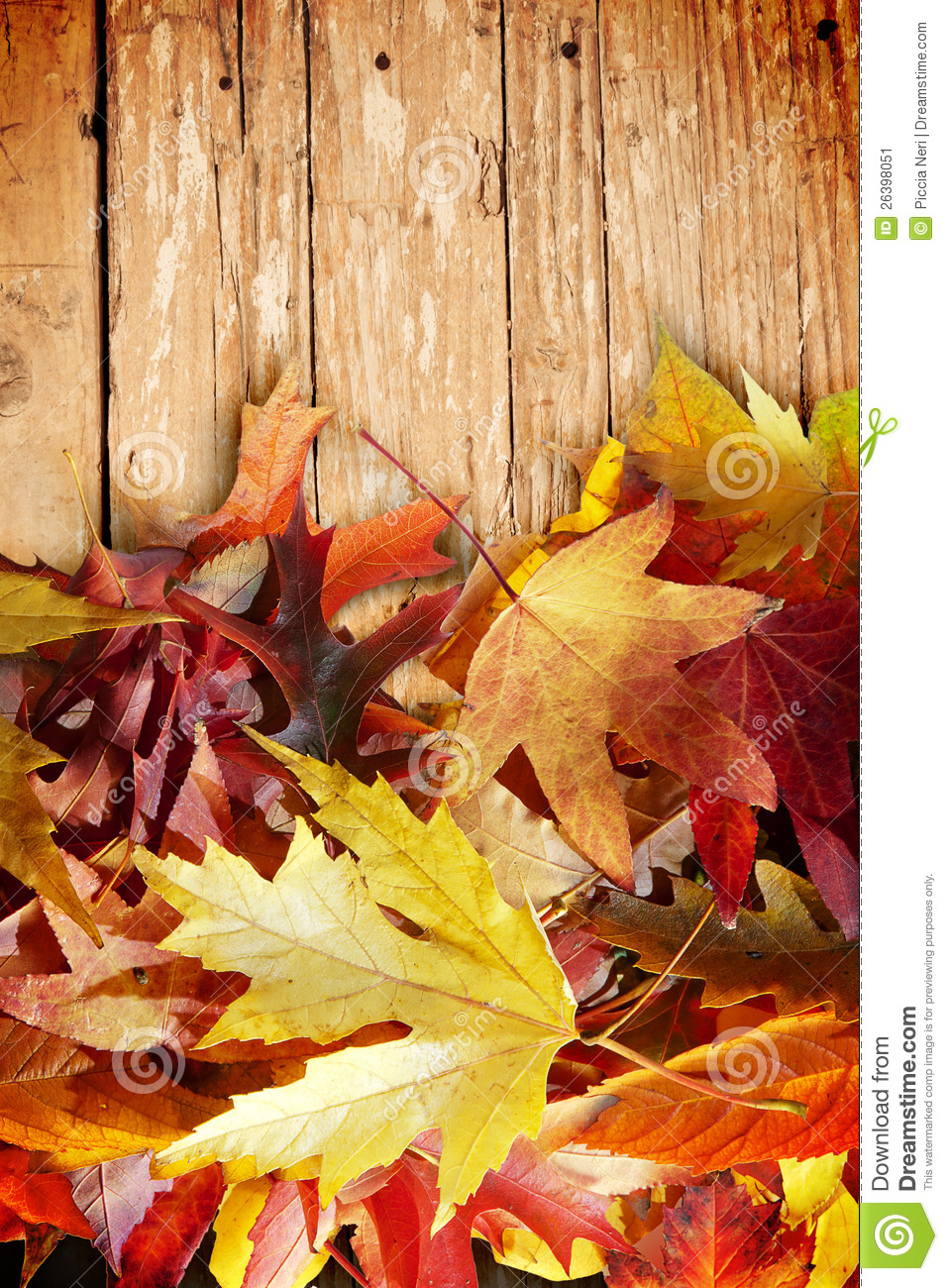 Fall Wooden Wallpaper Autumn Leaves On Wood Stock Image Image 26398051