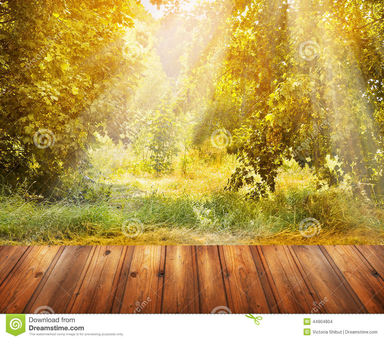 Fall Wooden Wallpaper Autumn Nature Background With Wooden Terrace And Fall Tree