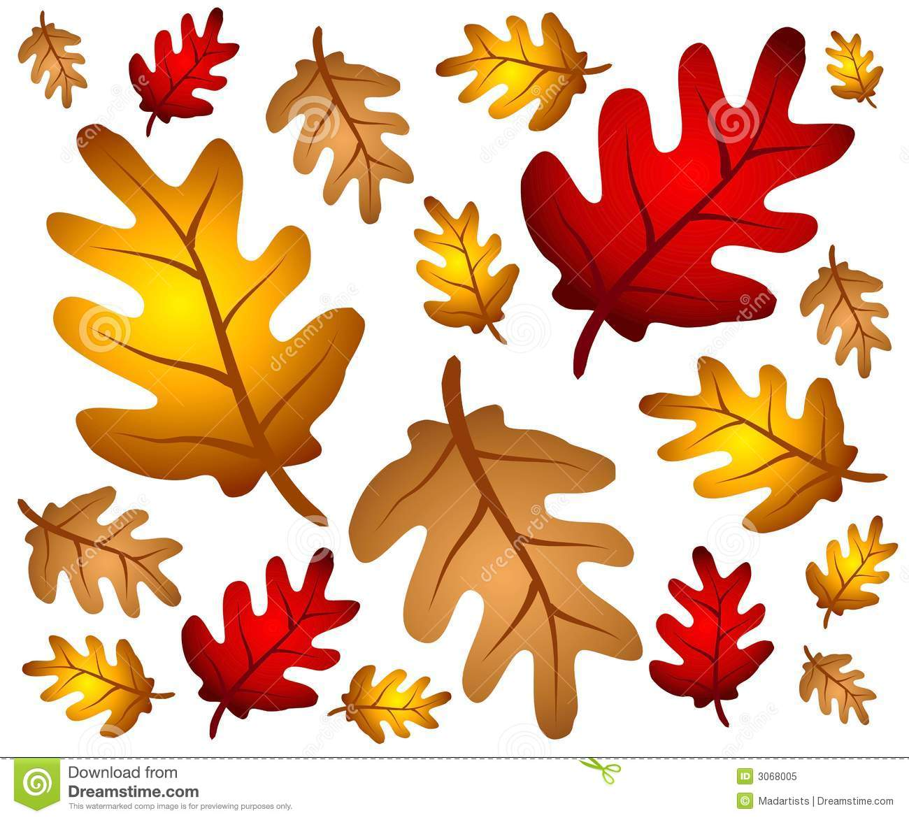 hight resolution of autumn oak leaves background
