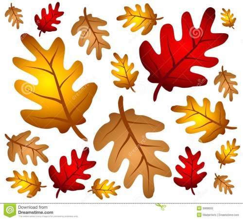 small resolution of autumn oak leaves background
