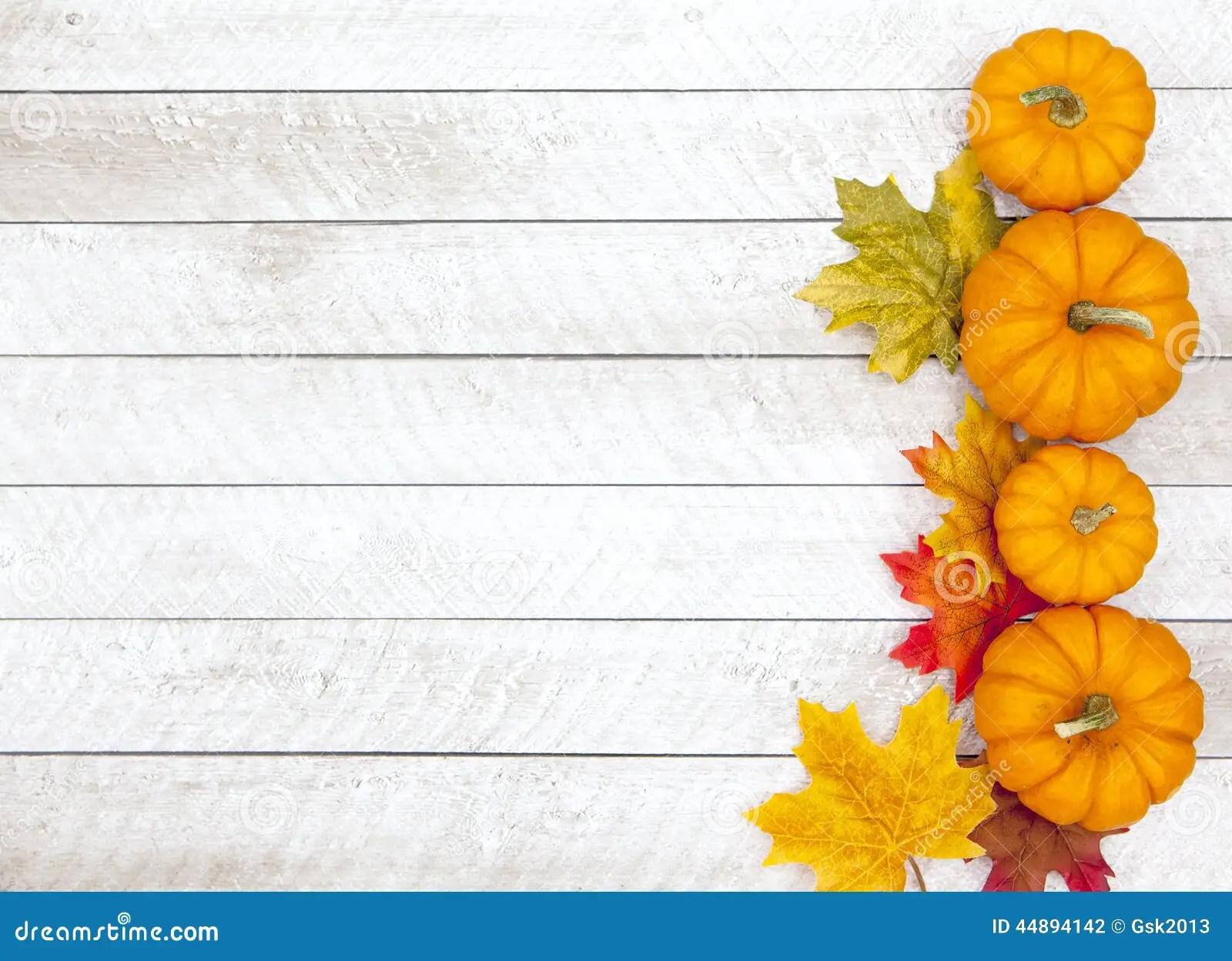Fall Harvest Wallpaper Backgrounds Autumn Pumpkin Thanksgiving Background Stock Photo Image