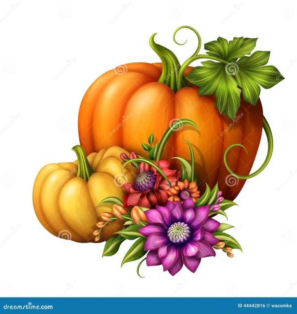 autumn pumpkins with seasonal flowers