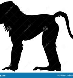 baboon [ 1300 x 1065 Pixel ]