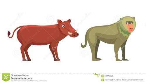 small resolution of savanna baboon stock illustrations 20 savanna baboon stock illustrations vectors clipart dreamstime