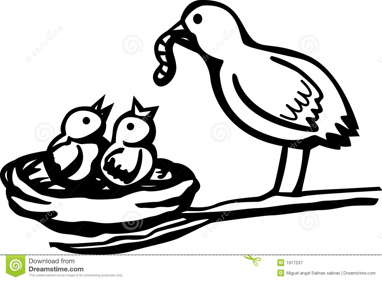 Baby Birds Feeded By Mother Vector Illustration Stock