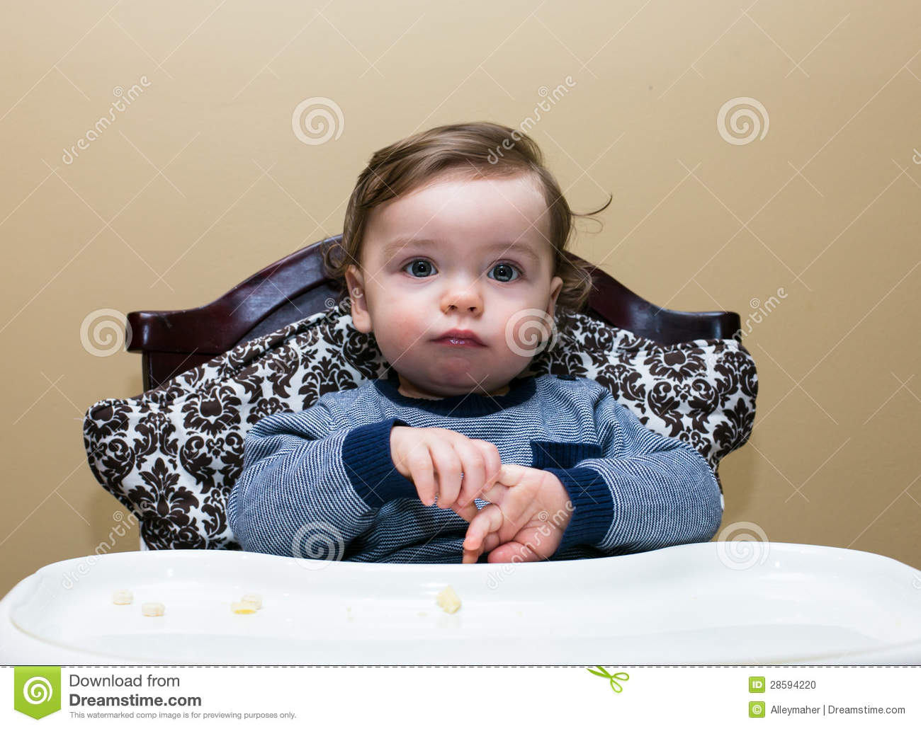 High Chair For Baby Boy Baby Boy Sits In High Chair Plays With Hands Stock Photo