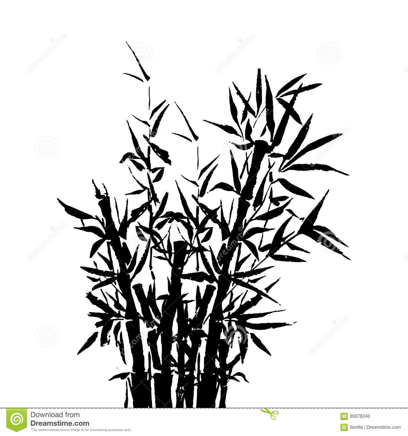 Bamboo Tree Japanese Plant Or Tree Traditional Sumi