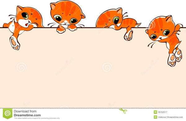 Banner With Cats Royalty Free Stock