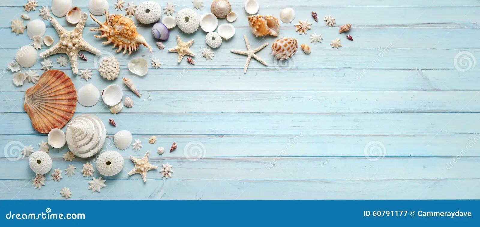 Summer Shells Blue Wood Banner Background Stock Image