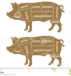 vector illustration based on traditional butcher s chart showing different cuts of pork with humorous labels such as tasty and porkalicious  [ 1300 x 870 Pixel ]