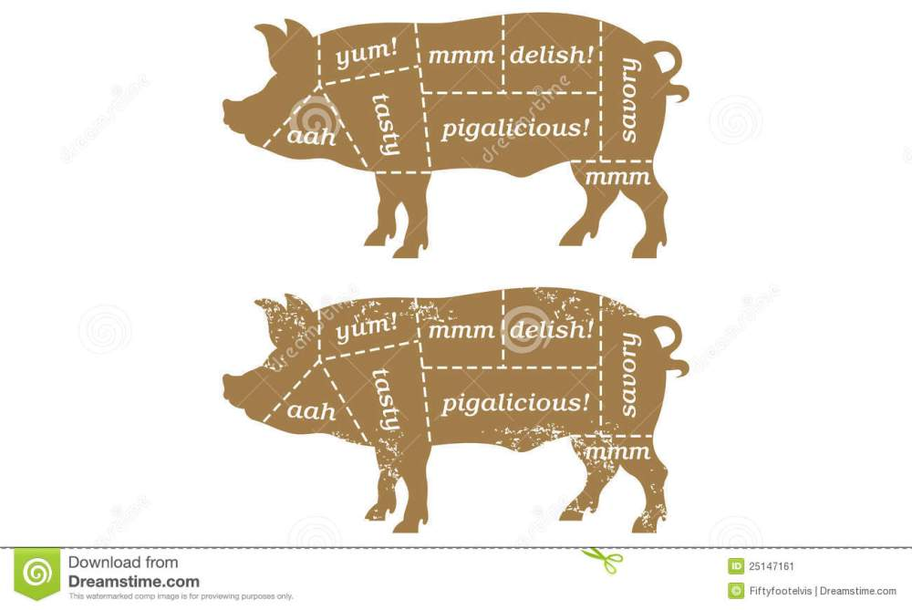 medium resolution of vector illustration based on traditional butcher s chart showing different cuts of pork with humorous labels such as tasty and porkalicious