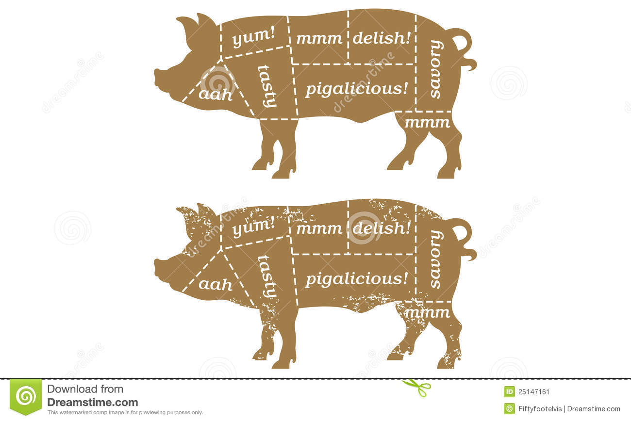 hight resolution of vector illustration based on traditional butcher s chart showing different cuts of pork with humorous labels such as tasty and porkalicious