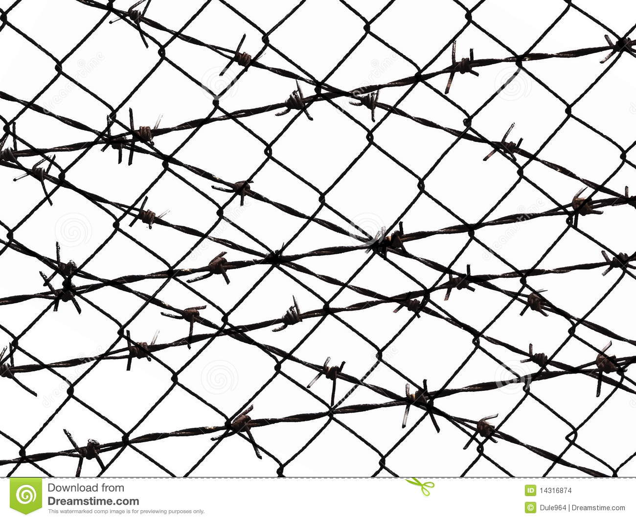 Barbed Wire Fence Protection Isolated On White Stock