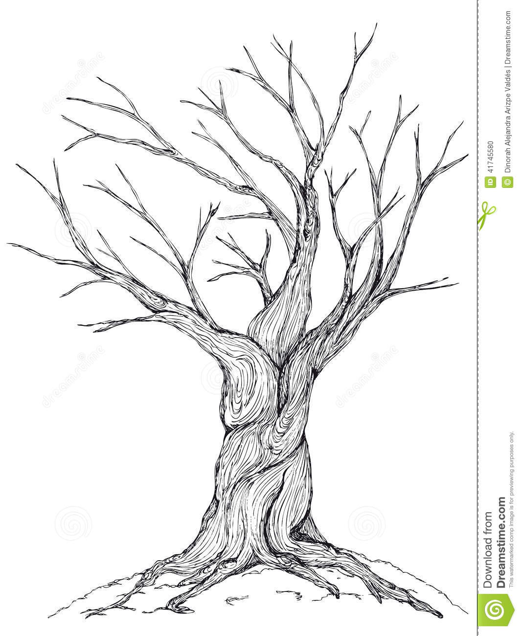 Simple Bare Tree Silhouette Sketch Coloring Page