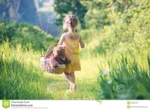 Barefoot Girl Walking With Picnic Basket In Wood Stock
