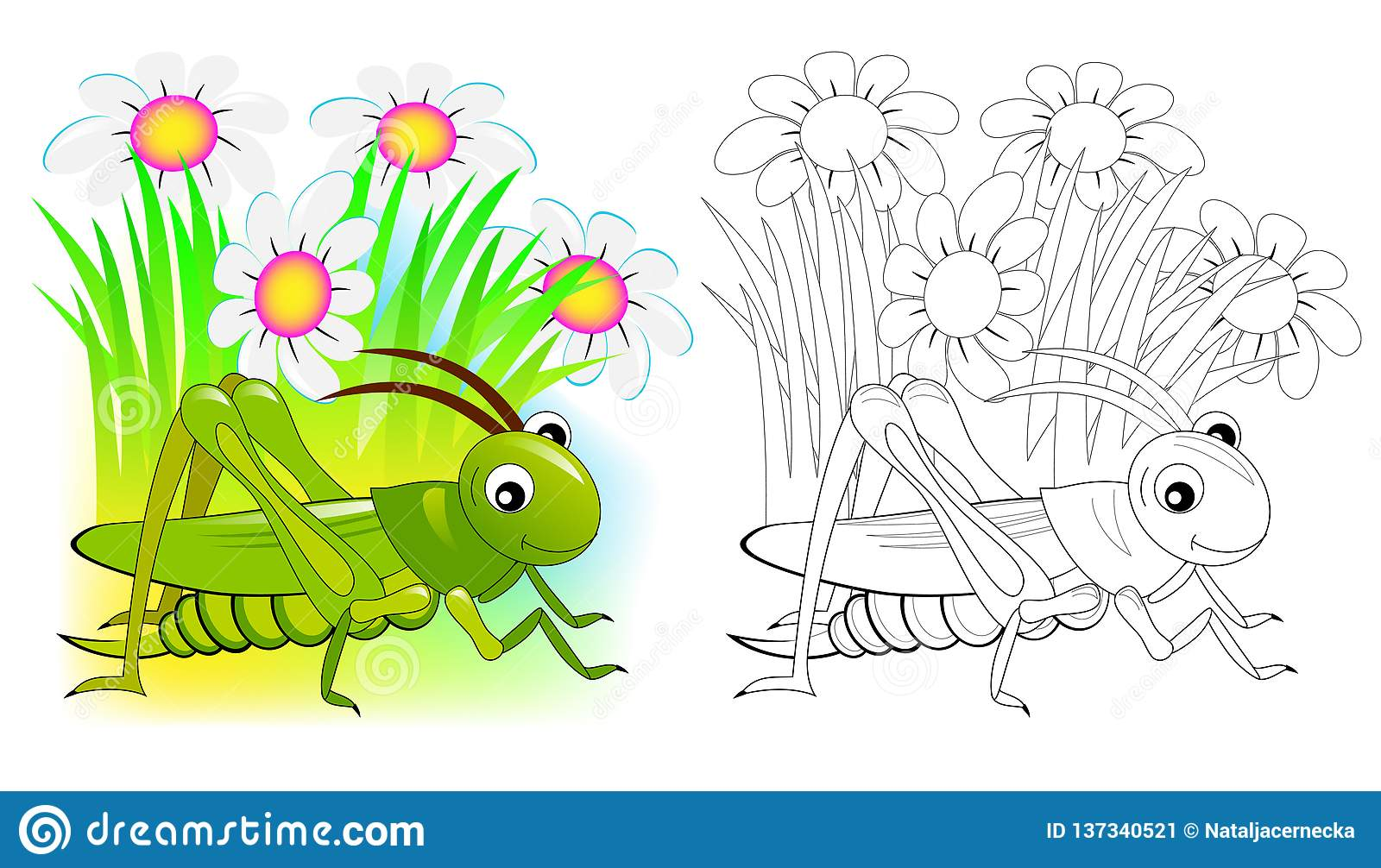 Fantasy Illustration Of Cute Cricket Colorful And Black