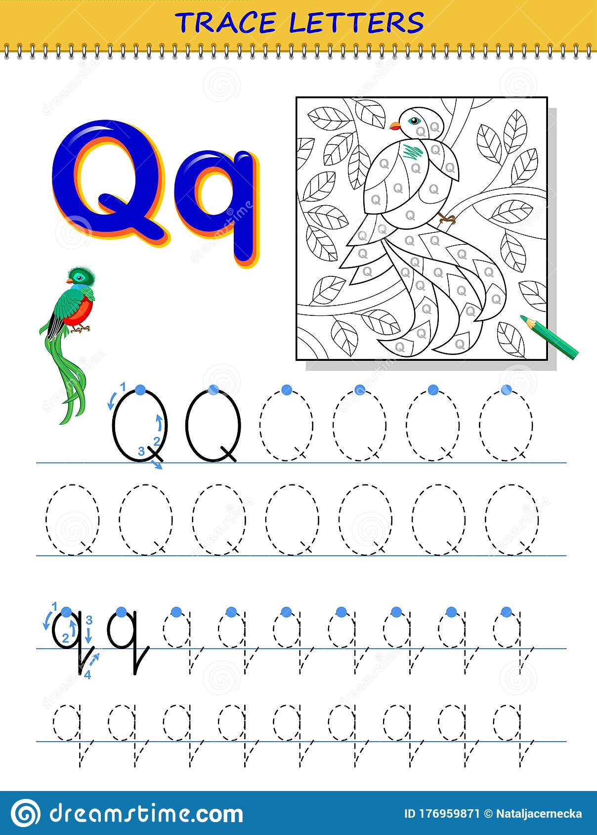 Tracing Letter Q For Study Alphabet Printable Worksheet