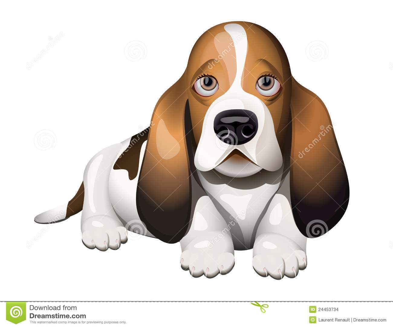 Basset Hound puppy stock vector Illustration of nose