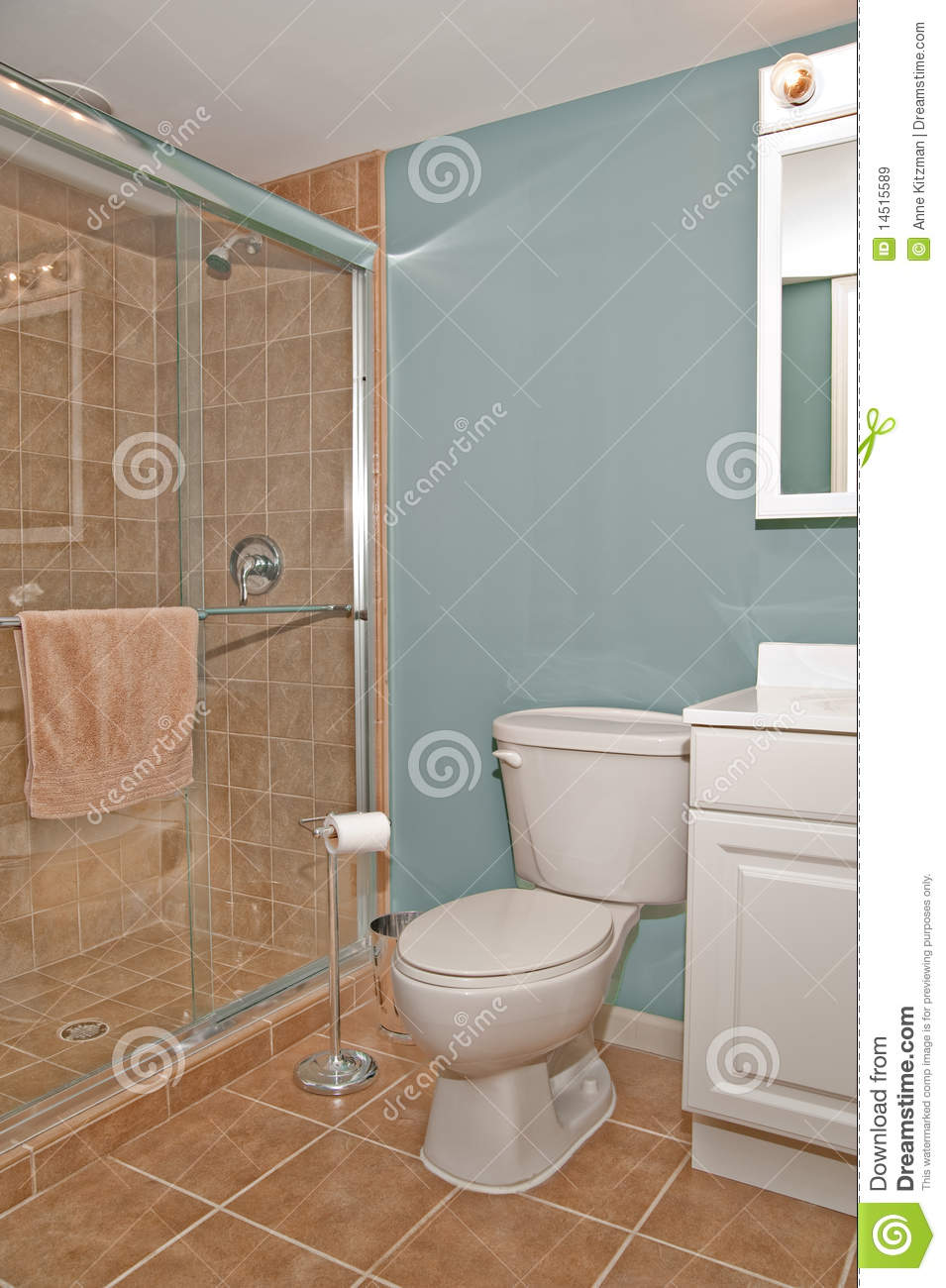 Bathroom Toilet And Shower Stall Stock Image  Image of