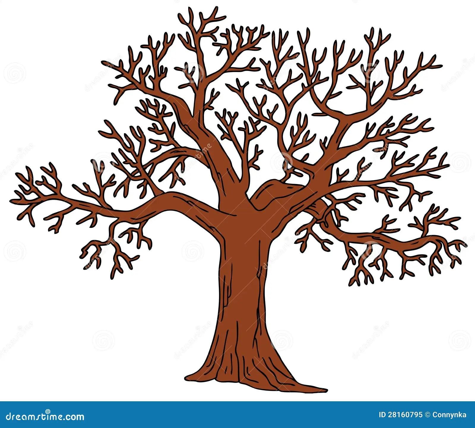 Baum Ohne Blätter Lizenzfreies Stockfoto - Bild 28160795