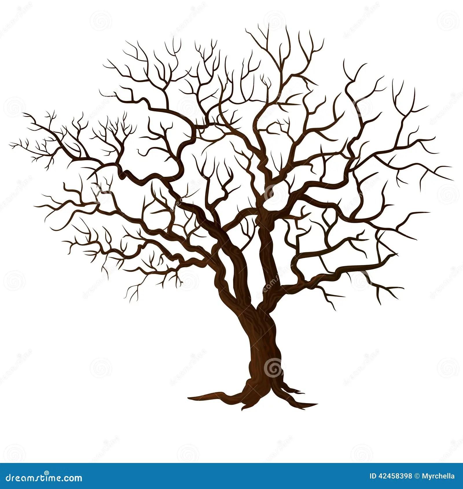 Baum Ohne Die Blätter Lokalisiert Auf Weiß Vektor