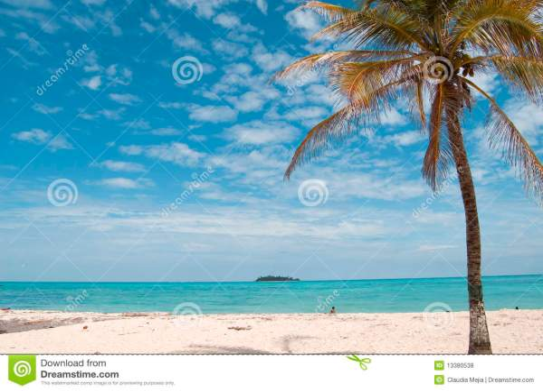beach landscape san andres island