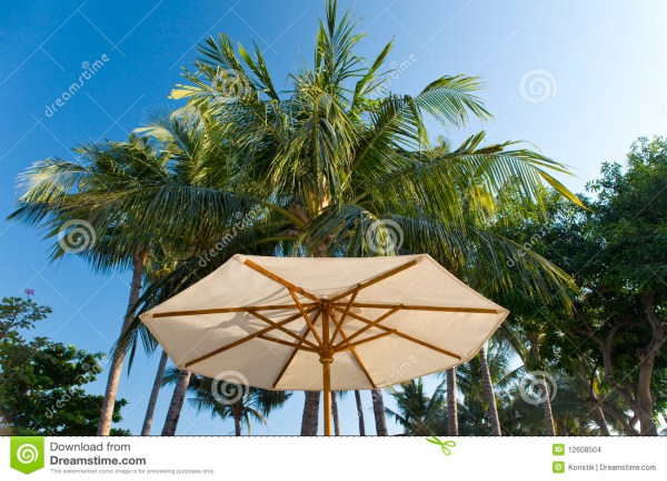 Beach Umbrella Background Of Palm Trees Stock