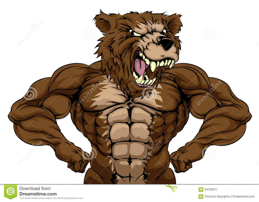 medium resolution of bear mascot