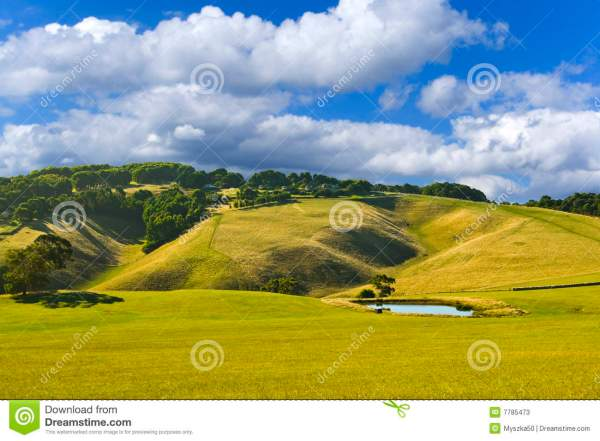 beautiful country landscape stock