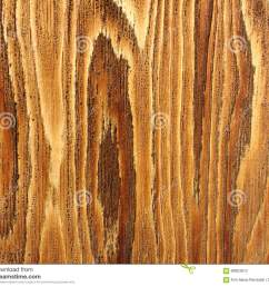 beautiful detail of wood grain [ 1300 x 1117 Pixel ]