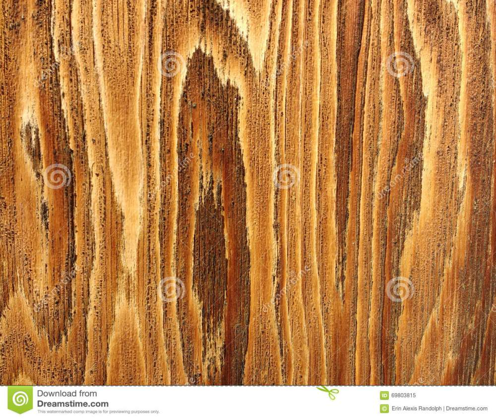 medium resolution of beautiful detail of wood grain