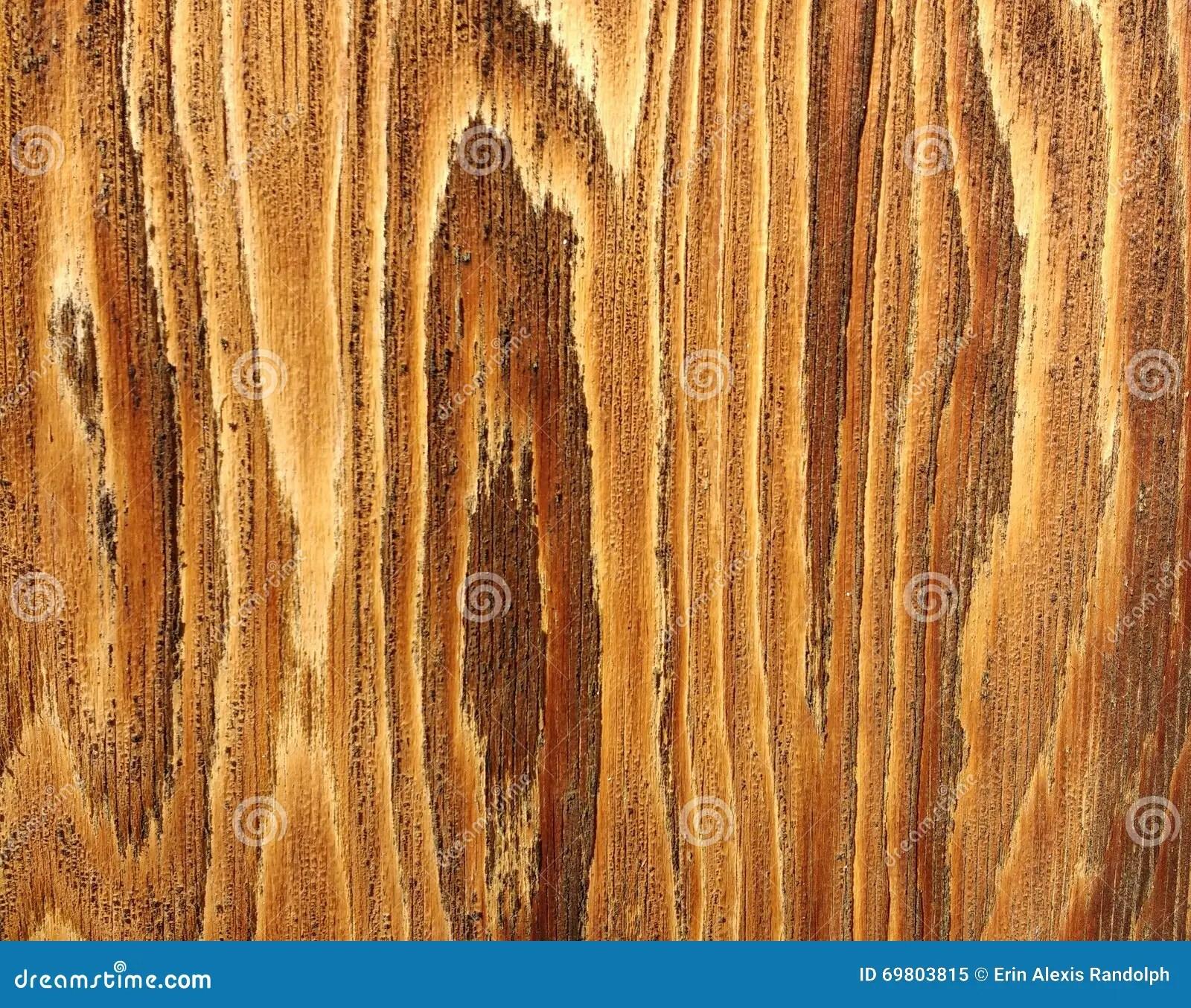 hight resolution of beautiful detail of wood grain