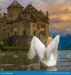 swan castle fantasy