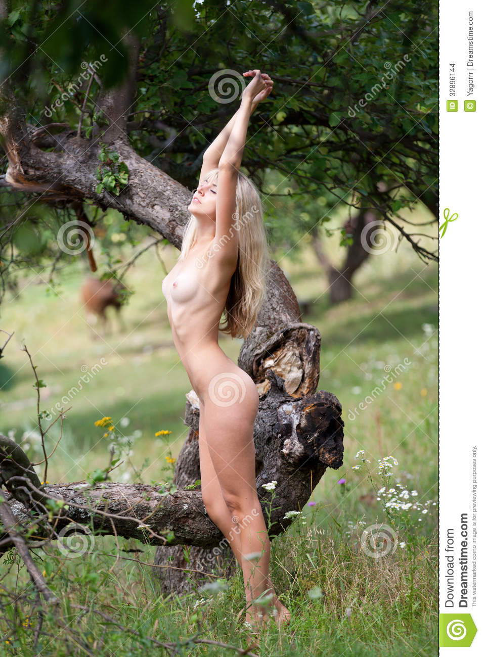 Beautiful Girl Nude In The Garden Stock Images  Image