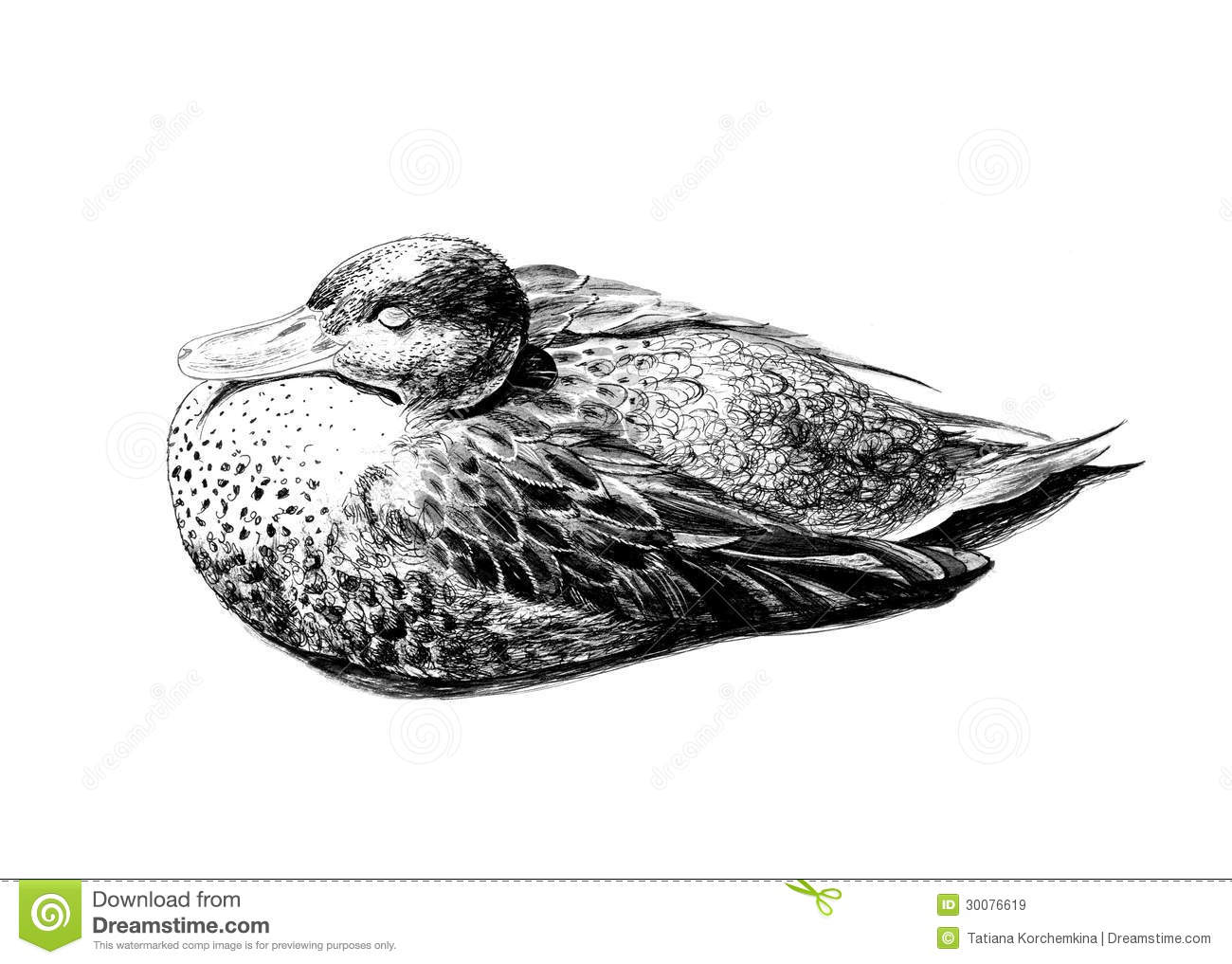 Graphics Duck Royalty Free Stock Images