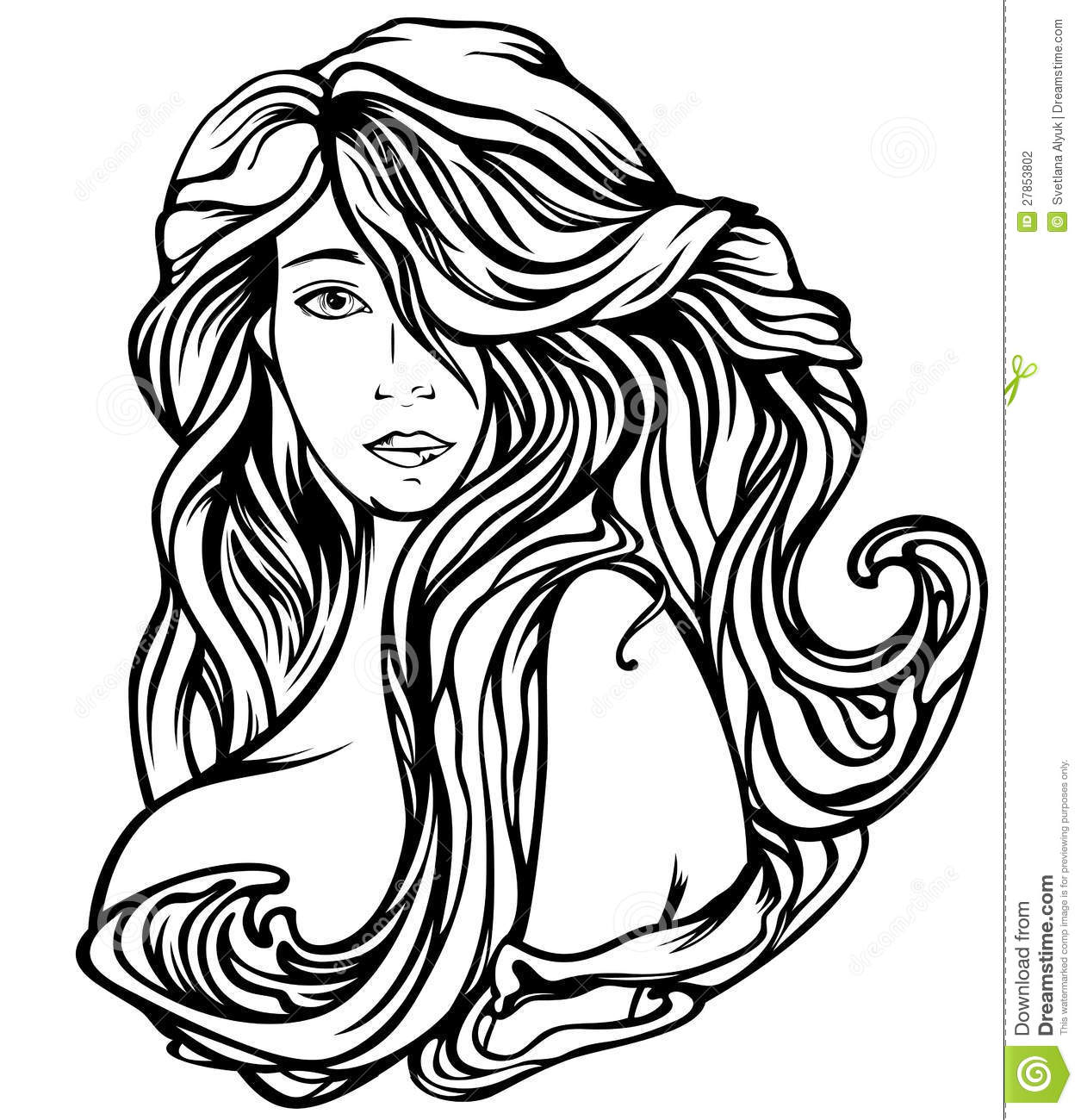 Beautiful Hair Vector Stock Vector Illustration Of