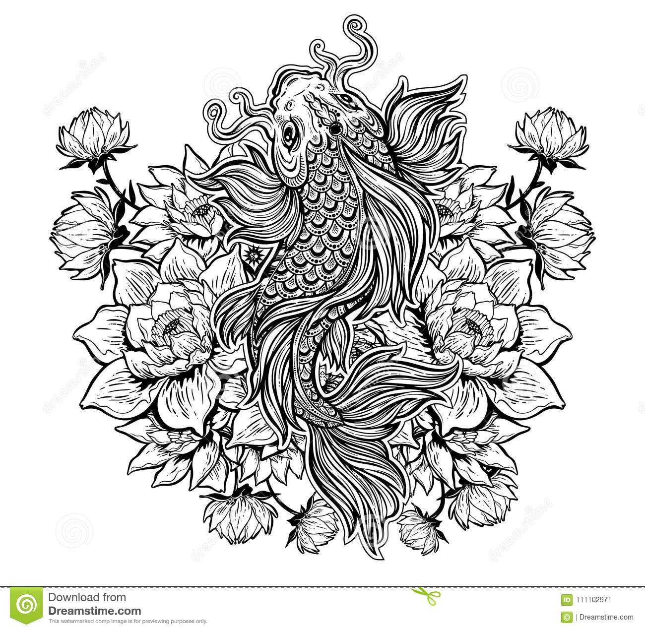 Beautiful Koi Carp Fish With Lotus Flowers Stock Vector