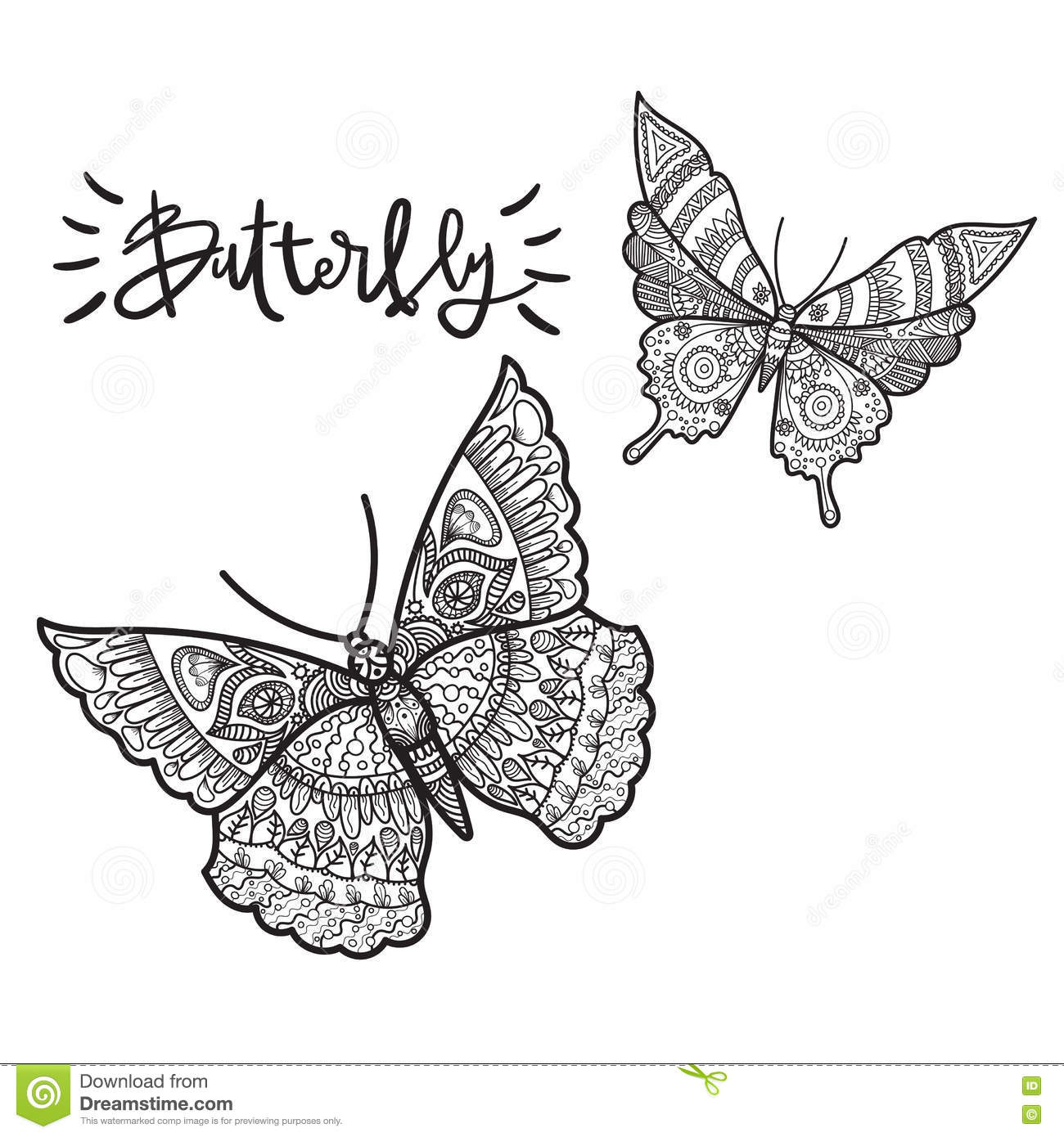 Beautiful Illustration Of Butterfly On A Whire Background Stock Vector
