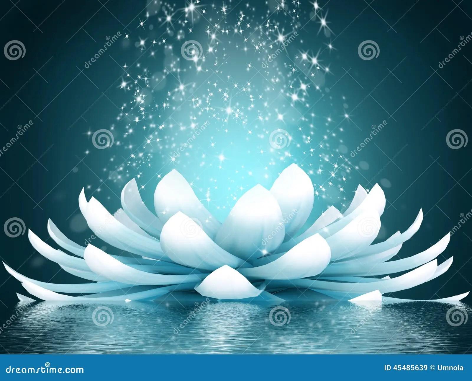 Pond Wallpaper Hd Beautiful Lotus Flower Stock Illustration Illustration Of