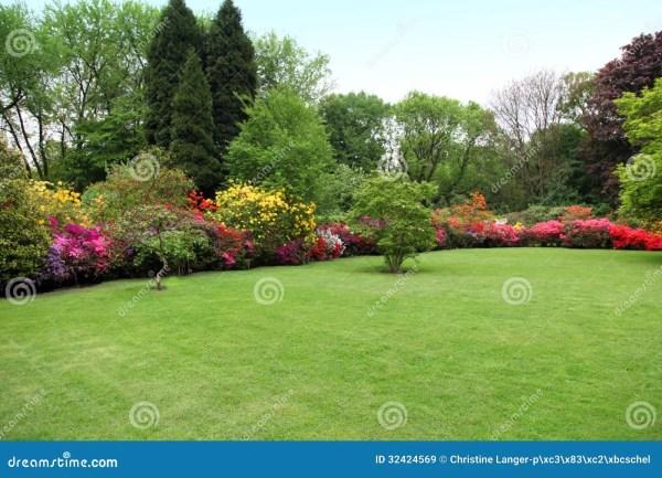 beautiful manicured lawn in summer