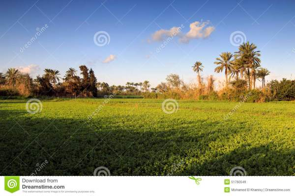 Beautiful Nature Country Egypt Stock Image Image 51760549